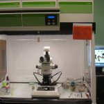 Stereomicroscope LEICA